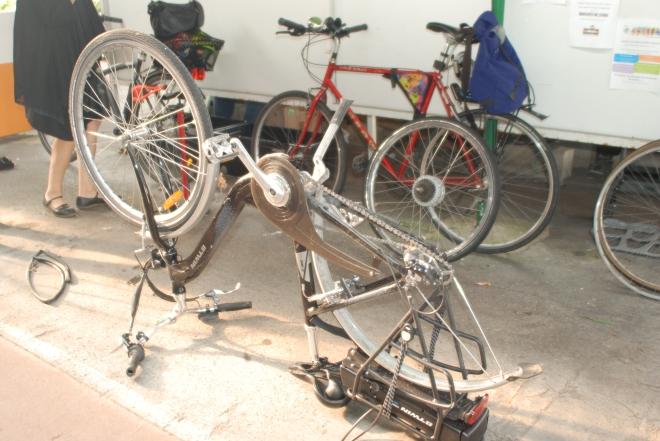 Les vélos sauvages en action ...